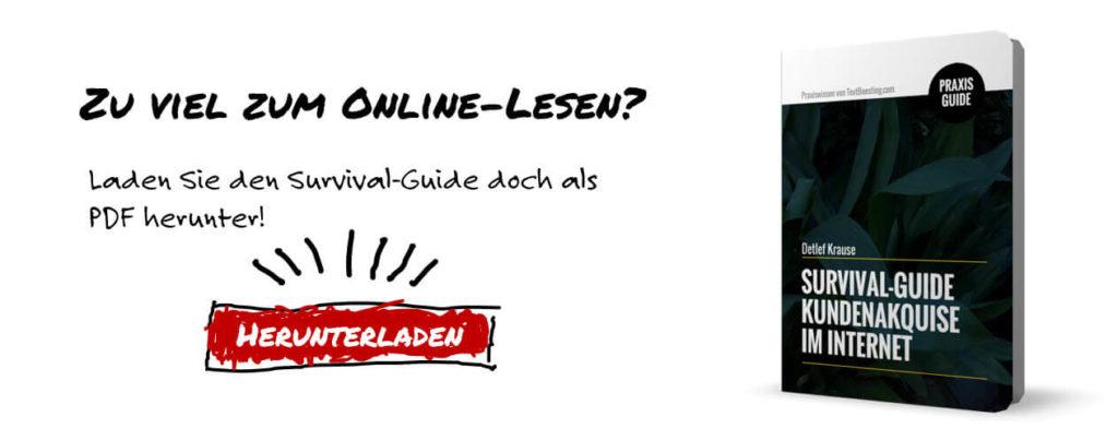 Kundenakquise im Internet: Survialguide für Einzelkämpfer
