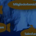 Erfolgreiche Websites: Wie andere Websites Kunden gewinnen